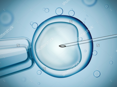 Fécondation in vitro (FIV), Genève gynéco